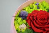 Rectángulo de regalo preservado de la flor fresca