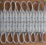 Goede Kwaliteit 2 Jaar van de Module van de Garantie SMD 2835 Waterdichte IP56 leiden 3-LEDs