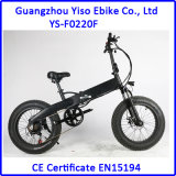 20 спрятанный дюймами E-Bike батареи тучный с Gasbag-Типом амортизатором удара