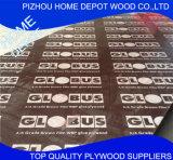 A película do uso da construção do núcleo do Poplar enfrentou a madeira compensada com logotipo