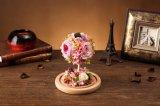 نمو 100% طبيعيّة حقيقيّة [روس] زهرة في زجاج لأنّ [فلنتين] هبة
