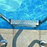 Swimmingpool-Strichleiter Sf-315 des Edelstahl-304 materielle