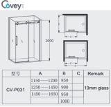 Allegato di alta qualità dell'acquazzone con il hardware dell'acciaio inossidabile 304# (A-CVP031)
