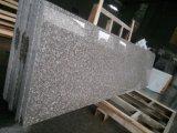 La Cina ha lucidato le mattonelle G664 del Brown del granito per la pavimentazione