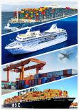 Serviço de transporte marítimo de Shenzhen para Casablanca