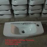 イギリス様式、Samll盆地、洗面所、流しは、正方形の壁洗面器をハングさせた