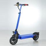 600W Eelctric Fahrrad mit 60V/20ah F/R Aufhebung