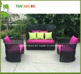 Sofà esterno 2016 di vendita della H-Cina della mobilia di vimini rotonda calda del giardino