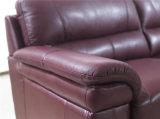 يعيش غرفة ثبت أريكة مع حديثة [جنوين لثر] أريكة (894)