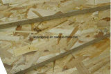 Preiswertes OSB From The Biggest OSB Factory in China