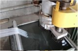 Plastik-EPE Schaumgummi-Apple-Frucht-Netz/Ineinander greifen/Deckel, der Maschine herstellt