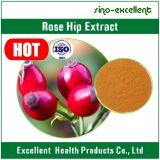로즈 엉덩이 과일 추출 Polyphenols25%