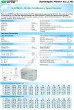 Ciclo profundo batería 6-GFM-100 12V100AH