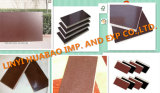 18mm Wood Plywood con Brown Film WBP Glue First Grade