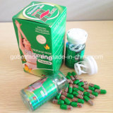 Perdita di peso massimo naturale della casella verde che dimagrisce capsula (GBS012)