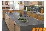 De aangepaste Moderne Vrije Keukenkast van het Ontwerp