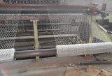 Galvanisé et PVC Coated Hexagonal Wire Mesh