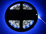 Bande élevée de lampe de la lumière 2835 S de bande de SMD LED
