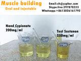근육 이익을%s Durabolin 신진대사 스테로이드 Nandrolone Cypionate 주입 액체