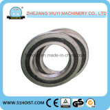 Bloque de cadena de tracción de la mano de la tonelada del tipo 1 del HS de la marca de fábrica de Shuangge