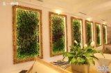 Alta qualità delle piante e dei fiori artificiali della parete verde Gu-Jc112100VW002
