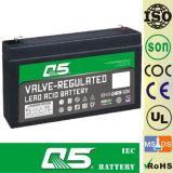 batterie 6V7.0AH rechargeable, pour la lumière Emergency, éclairage extérieur, lampe solaire de jardin, lanterne solaire, lumières campantes solaires, torche solaire, ventilateur solaire, ampoule