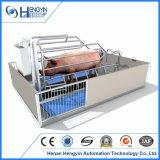 Ductile hierro fundido piso cerdo Sow Farrowing Crate / Pen / jaula para la venta