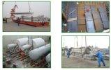 Beroeps uit de Verschepende Dienst van de Container van de Maat aan wereldwijd