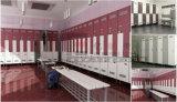 De hete Kast van de Raad van de Verkoop Phenolic Compacte die voor Gymnasium&Fitnessroom wordt gebruikt