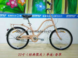 vorbildliches Fahrrad der Stadt-2017new, Dame Bike, Dame Bicycle