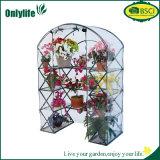 OnlylifeのPE PVCファブリック小さい庭の温室の暖かい家