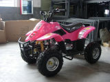 4 Wheeler (MDL GA001)를 가진 자동적인 90cc Quad Mini ATV