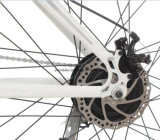 卸売28インチの電気自転車36V 10.4ahのリチウム電池の道Ebike