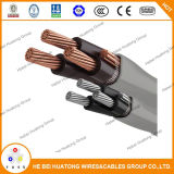 Aluminium de câble d'entrée de service de l'UL 854/type de cuivre expert en logiciel, type R/U Ser 8 8 8 8