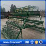 Cage de poulet de couche de qualité