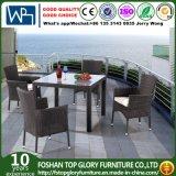 Al jardín Patio Mesa de comedor y sillas para muebles de exterior (TG-930)