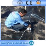 1mm membrana impermeabilizante Pond Liner LDPE EVA PVC HDPE Geomembrana