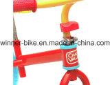 Bicicleta de marcha en bicicleta (AB12RN-1217)