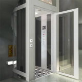 Elevador clássico do elevador de Comercial do passageiro de vidro do edifício Home da casa de campo