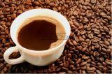 Máquina de la cafetería del acero inoxidable