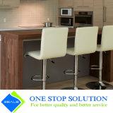 Gli armadi da cucina domestici della mobilia di modo alzano in su gli accessori (ZY 1028)