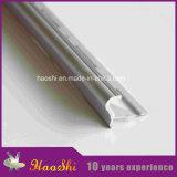 Azulejo-en los perfiles de aluminio de la protuberancia de la rampa en el acabamiento de plata de Matt (HSSN-05)