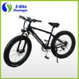 新しいデザイン250W工場によって隠される電池の電気脂肪質のバイク