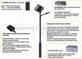 Luz de rua solar 30W 40W 50W 60W