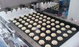 Machines chaudes d'extrudeuse de biscuits d'usine à échelle réduite de vente de la Chine