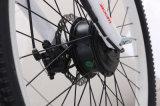 使用される販売のための電気自転車の電気バイクの最もよい価格