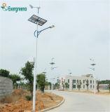 Todos en una luz de calle solar separada 80W solar de la luz de calle de la venta LED