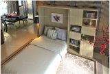 2016 Sepsion تصميم جديد أثاث المنزل عمودي إمالة ميرفي الجدار سرير FJ-22