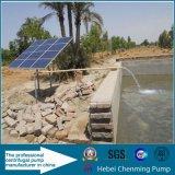 Солнечная водяная помпа для полива потека