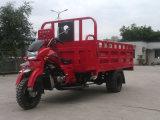 Consegna Van del triciclo delle tre rotelle
